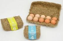 design-das-embalagens-sustentaveis-thumb