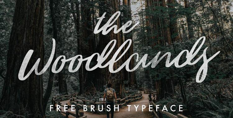woodlandy-fonte-gratuita
