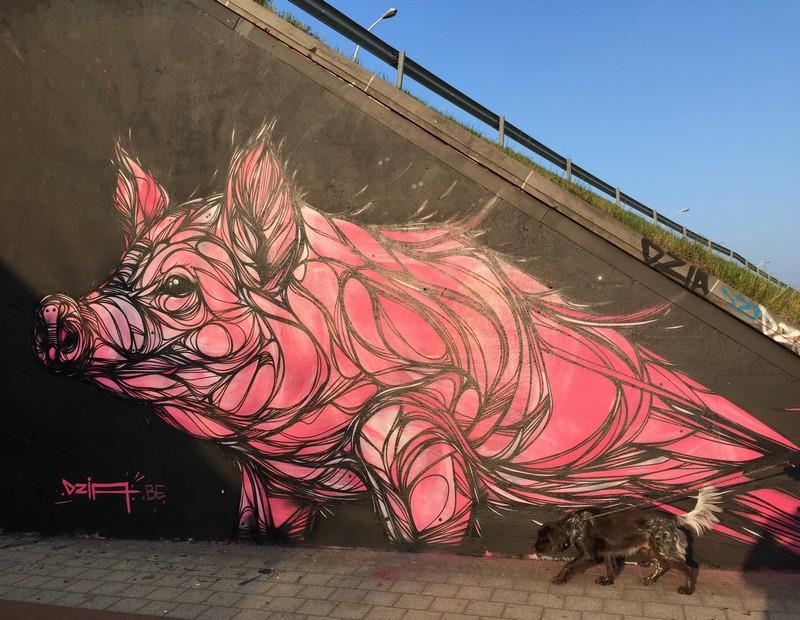 bela-e-animalesca-arte-urbana-de-dzia (14)