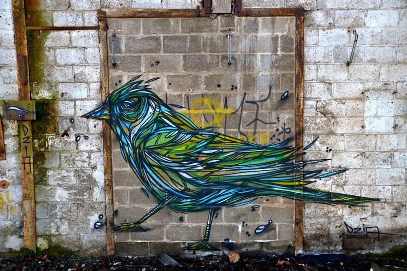 bela-e-animalesca-arte-urbana-de-dzia (3)