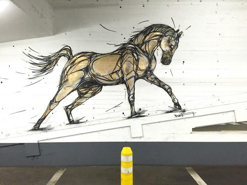 bela-e-animalesca-arte-urbana-de-dzia (4)