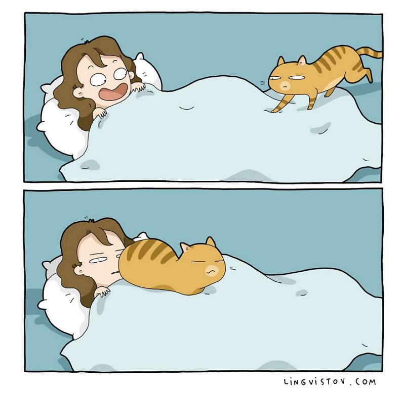 divertidas-ilustracoes-mostram-vida-de-quem-tem-um-gato-de-estimacao-7