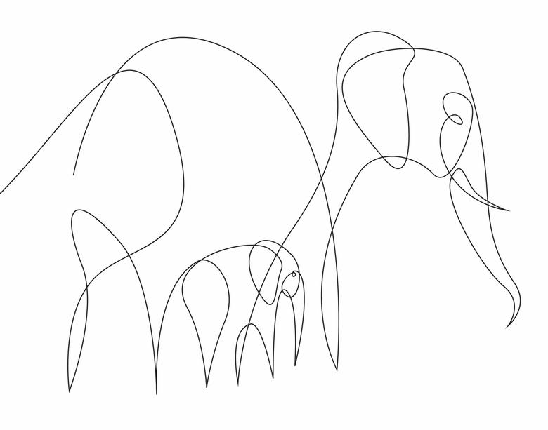 ilustrando-animais-com-apenas-uma-linha-10