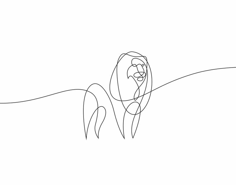 ilustrando-animais-com-apenas-uma-linha-12
