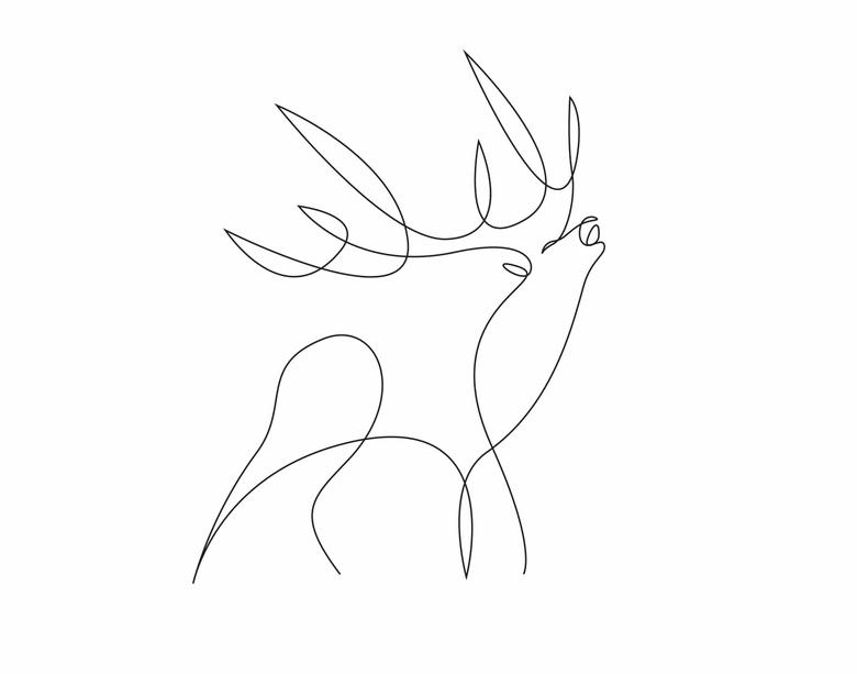 ilustrando-animais-com-apenas-uma-linha-16