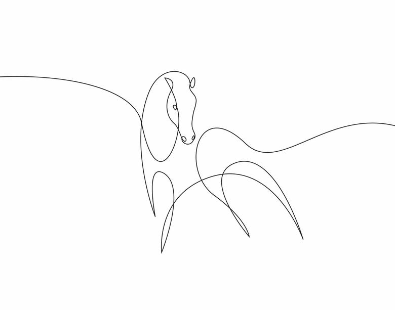 ilustrando-animais-com-apenas-uma-linha-4