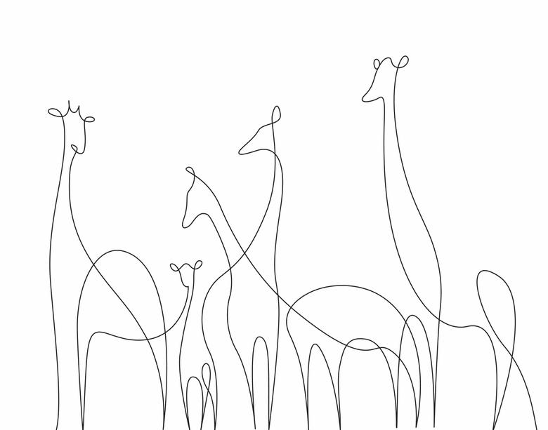 ilustrando-animais-com-apenas-uma-linha-9