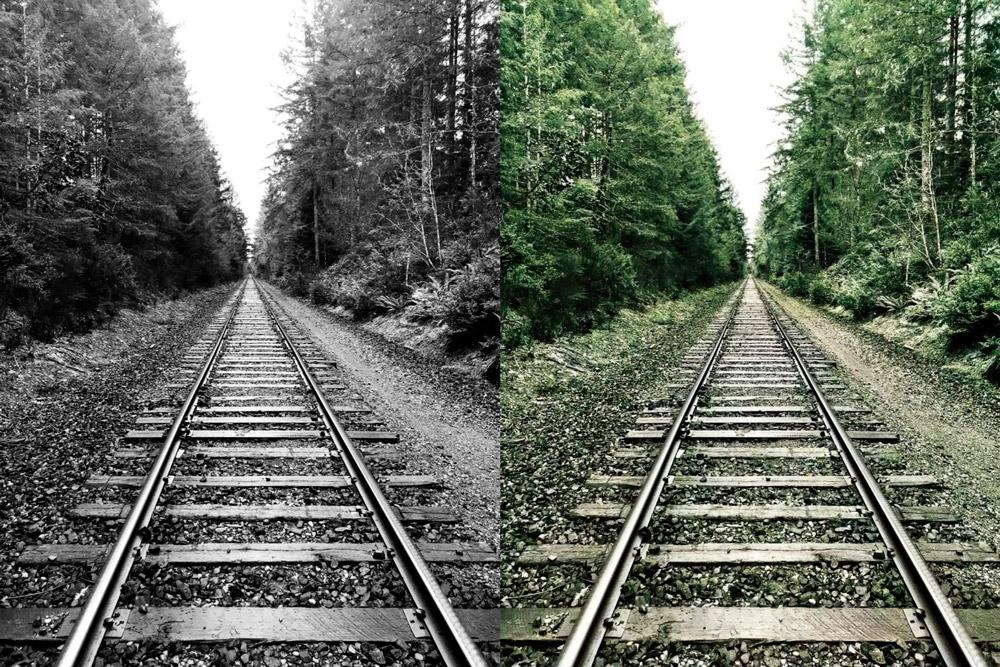 Esse Site Permite Colorir Fotografias Em Preto E Branco
